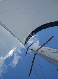 sail_0088 copy